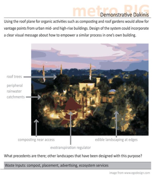 demo-dakinis