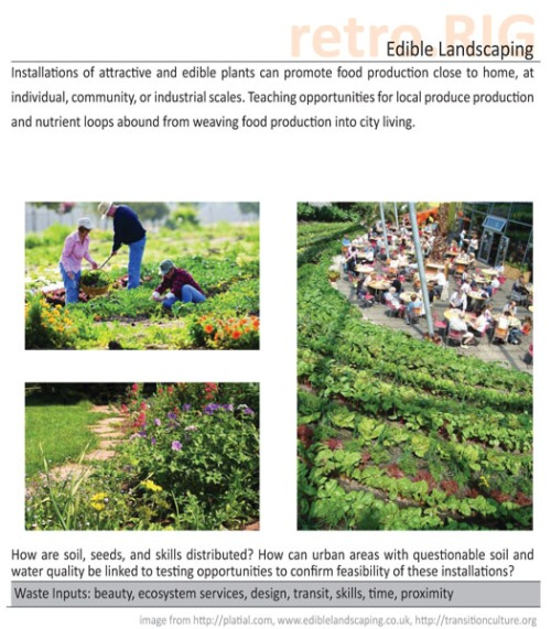 edible-landscaping