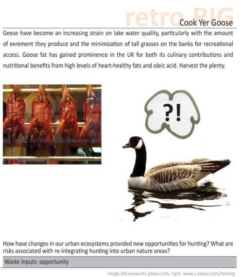 goose-copy