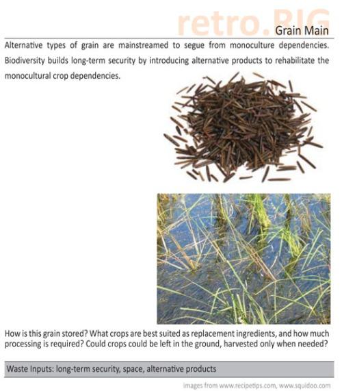 grain-main